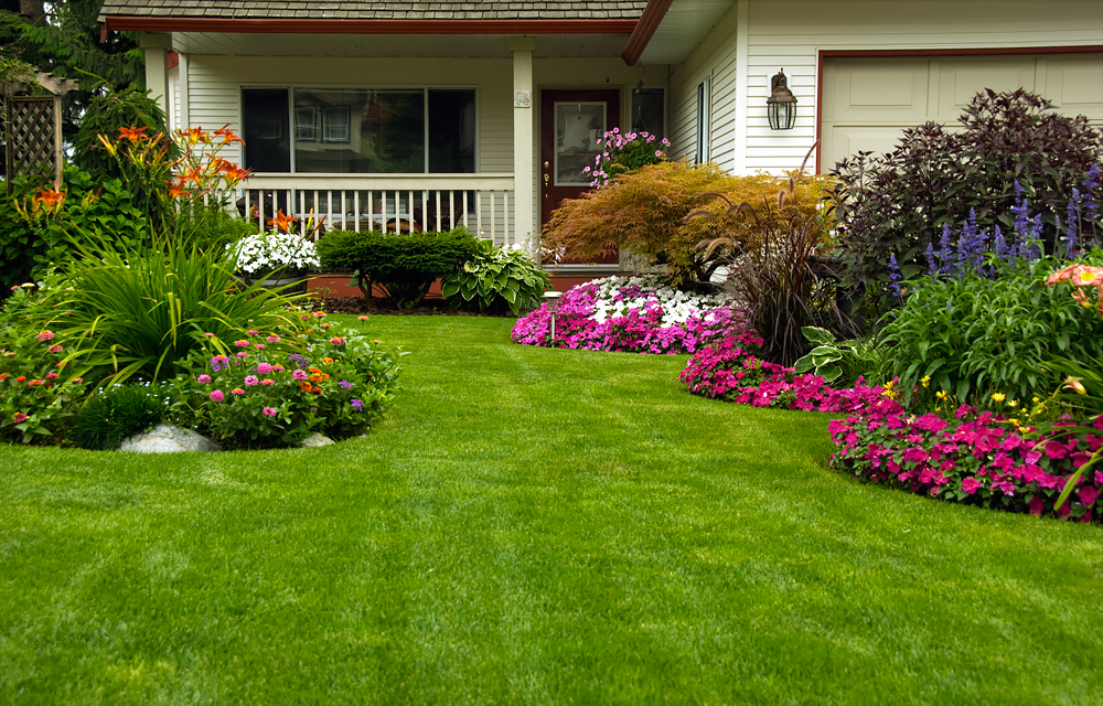 Aerating Your Lawn Iowa City